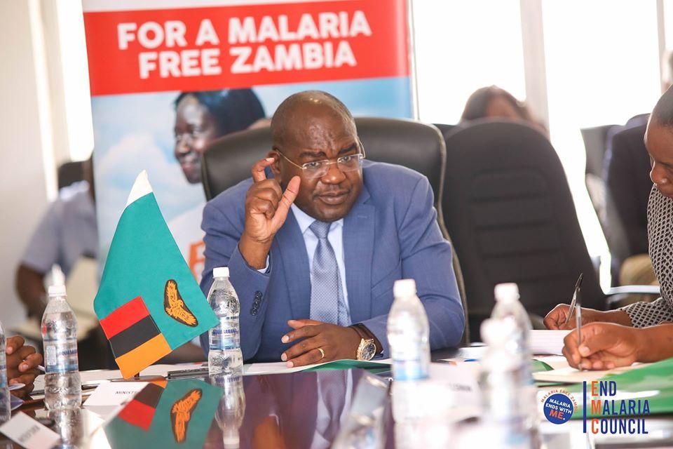 End Malaria Councils